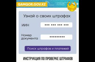 инструкция оплаты штрафов